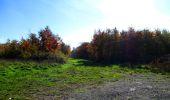 Randonnée Marche LONGPONT - en foret de Retz_ 41_Longpont_Vertes Feuilles_AR - Photo 108