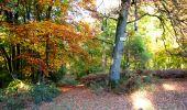 Randonnée Marche LONGPONT - en foret de Retz_ 41_Longpont_Vertes Feuilles_AR - Photo 46