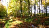 Randonnée Marche LONGPONT - en foret de Retz_ 41_Longpont_Vertes Feuilles_AR - Photo 58