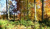 Randonnée Marche LONGPONT - en foret de Retz_ 41_Longpont_Vertes Feuilles_AR - Photo 97