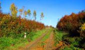 Randonnée Marche LONGPONT - en foret de Retz_ 41_Longpont_Vertes Feuilles_AR - Photo 32