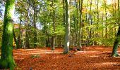 Randonnée Marche LONGPONT - en foret de Retz_ 41_Longpont_Vertes Feuilles_AR - Photo 55