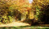 Randonnée Marche LONGPONT - en foret de Retz_ 41_Longpont_Vertes Feuilles_AR - Photo 107