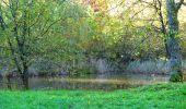 Randonnée Marche LONGPONT - en foret de Retz_ 41_Longpont_Vertes Feuilles_AR - Photo 188