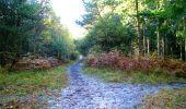 Randonnée Marche LONGPONT - en foret de Retz_ 41_Longpont_Vertes Feuilles_AR - Photo 18