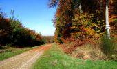 Randonnée Marche LONGPONT - en foret de Retz_ 41_Longpont_Vertes Feuilles_AR - Photo 102