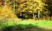 Randonnée Marche LONGPONT - en foret de Retz_ 41_Longpont_Vertes Feuilles_AR - Photo 93