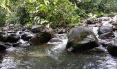 Trail Walk Unknown - Rivire Bras David - Photo 16