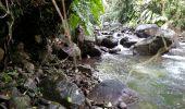 Trail Walk Unknown - Rivire Bras David - Photo 15