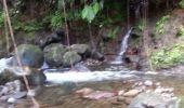 Trail Walk Unknown - Rivire Bras David - Photo 14