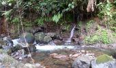 Trail Walk Unknown - Rivire Bras David - Photo 13