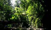 Randonnée Marche Unknown - Rivire Bras David - Photo 9