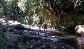 Trail Walk Unknown - Rivire Bras David - Photo 6