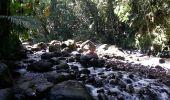Trail Walk Unknown - Rivire Bras David - Photo 4