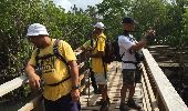 Trail Walk LE DIAMANT - taupinière dizac - Photo 7