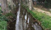 Trail Walk PERPIGNAN - 66 PERPIGNAN - CANOHES par le canal et le ch. des Carlettes - Photo 7