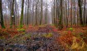 Trail Walk LONGPONT - en foret de Retz_42_ Longpont_la Pierre Clouise_AR - Photo 249