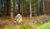 Trail Walk LONGPONT - en foret de Retz_42_ Longpont_la Pierre Clouise_AR - Photo 256