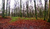 Trail Walk LONGPONT - en foret de Retz_42_ Longpont_la Pierre Clouise_AR - Photo 191