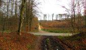 Trail Walk LONGPONT - en foret de Retz_42_ Longpont_la Pierre Clouise_AR - Photo 75