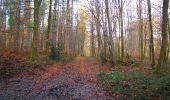 Trail Walk LONGPONT - en foret de Retz_42_ Longpont_la Pierre Clouise_AR - Photo 227