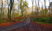 Trail Walk LONGPONT - en foret de Retz_42_ Longpont_la Pierre Clouise_AR - Photo 202