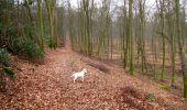 Trail Walk LONGPONT - en foret de Retz_42_ Longpont_la Pierre Clouise_AR - Photo 26