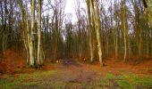Trail Walk LONGPONT - en foret de Retz_42_ Longpont_la Pierre Clouise_AR - Photo 10