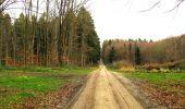 Trail Walk LONGPONT - en foret de Retz_42_ Longpont_la Pierre Clouise_AR - Photo 87