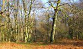 Trail Walk LONGPONT - en foret de Retz_42_ Longpont_la Pierre Clouise_AR - Photo 28