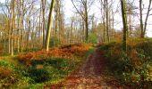Trail Walk LONGPONT - en foret de Retz_42_ Longpont_la Pierre Clouise_AR - Photo 156