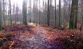 Trail Walk LONGPONT - en foret de Retz_42_ Longpont_la Pierre Clouise_AR - Photo 149