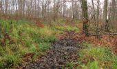 Trail Walk LONGPONT - en foret de Retz_42_ Longpont_la Pierre Clouise_AR - Photo 124