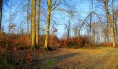 Trail Walk LONGPONT - en foret de Retz_42_ Longpont_la Pierre Clouise_AR - Photo 4