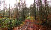 Trail Walk LONGPONT - en foret de Retz_42_ Longpont_la Pierre Clouise_AR - Photo 151