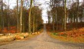 Trail Walk LONGPONT - en foret de Retz_42_ Longpont_la Pierre Clouise_AR - Photo 72
