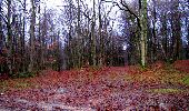 Trail Walk LONGPONT - en foret de Retz_42_ Longpont_la Pierre Clouise_AR - Photo 221