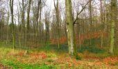 Trail Walk LONGPONT - en foret de Retz_42_ Longpont_la Pierre Clouise_AR - Photo 58