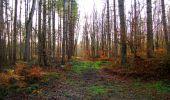 Trail Walk LONGPONT - en foret de Retz_42_ Longpont_la Pierre Clouise_AR - Photo 226