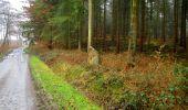 Trail Walk LONGPONT - en foret de Retz_42_ Longpont_la Pierre Clouise_AR - Photo 257