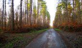 Trail Walk LONGPONT - en foret de Retz_42_ Longpont_la Pierre Clouise_AR - Photo 225