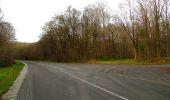 Trail Walk LONGPONT - en foret de Retz_42_ Longpont_la Pierre Clouise_AR - Photo 110