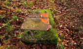Trail Walk LONGPONT - en foret de Retz_42_ Longpont_la Pierre Clouise_AR - Photo 132