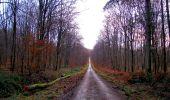 Trail Walk LONGPONT - en foret de Retz_42_ Longpont_la Pierre Clouise_AR - Photo 222