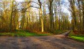 Trail Walk LONGPONT - en foret de Retz_42_ Longpont_la Pierre Clouise_AR - Photo 197