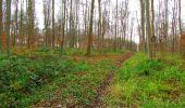 Trail Walk LONGPONT - en foret de Retz_42_ Longpont_la Pierre Clouise_AR - Photo 95