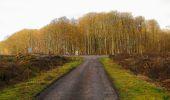 Trail Walk LONGPONT - en foret de Retz_42_ Longpont_la Pierre Clouise_AR - Photo 205