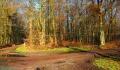 Trail Walk LONGPONT - en foret de Retz_42_ Longpont_la Pierre Clouise_AR - Photo 16