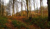 Trail Walk LONGPONT - en foret de Retz_42_ Longpont_la Pierre Clouise_AR - Photo 33