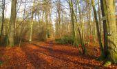 Trail Walk LONGPONT - en foret de Retz_42_ Longpont_la Pierre Clouise_AR - Photo 160